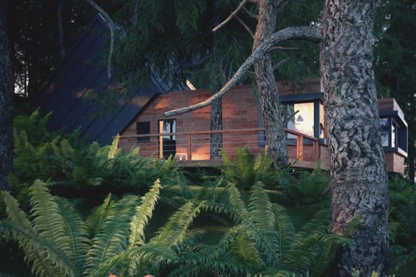 Wizualizacja domu w lesie ver.2, wizualizacje architektoniczne